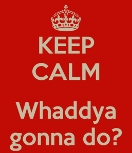 keep-calm-whaddya-gonna-do
